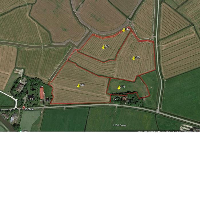 5 percelen grasland gelegen aan de Hoptille Hilaard